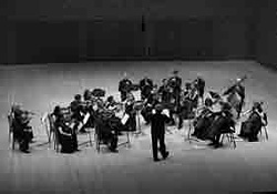 Chamber Ensemble of the Mariinsky Theatre